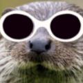 TD_Otter